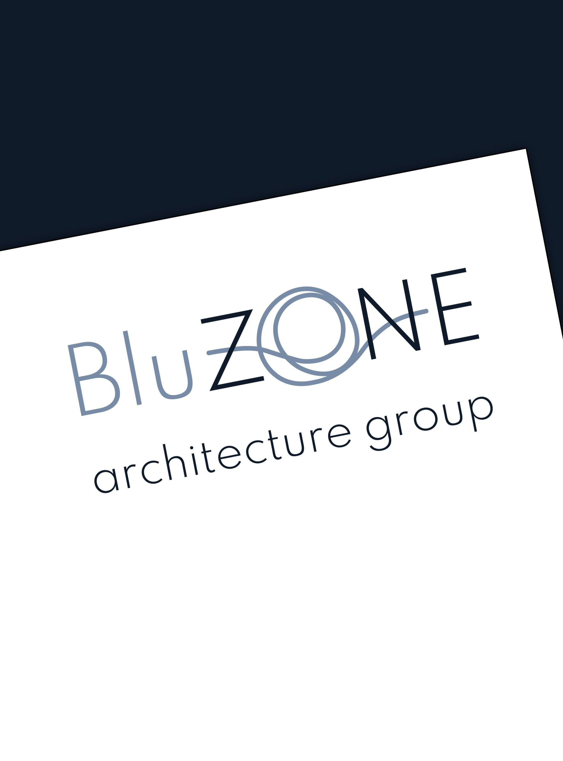 BluZONE - création de l'image de marque