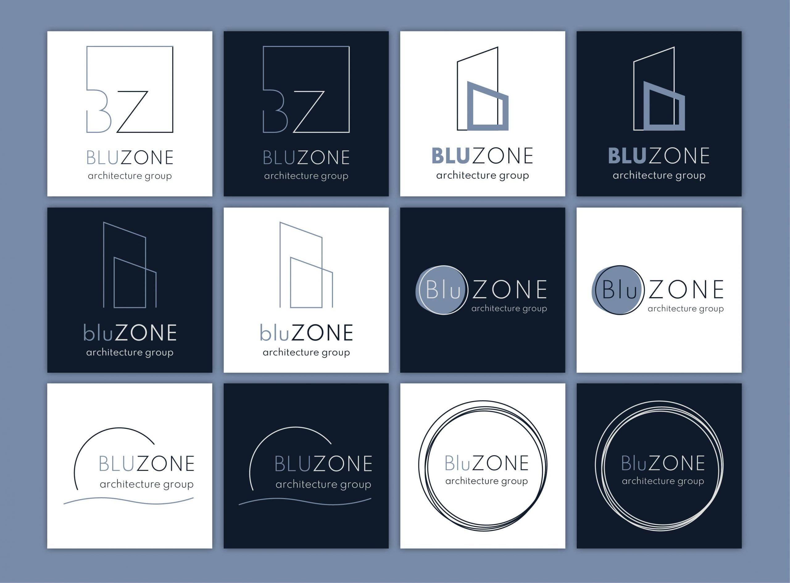 BluZONE - création de l'image de marque - esquisses