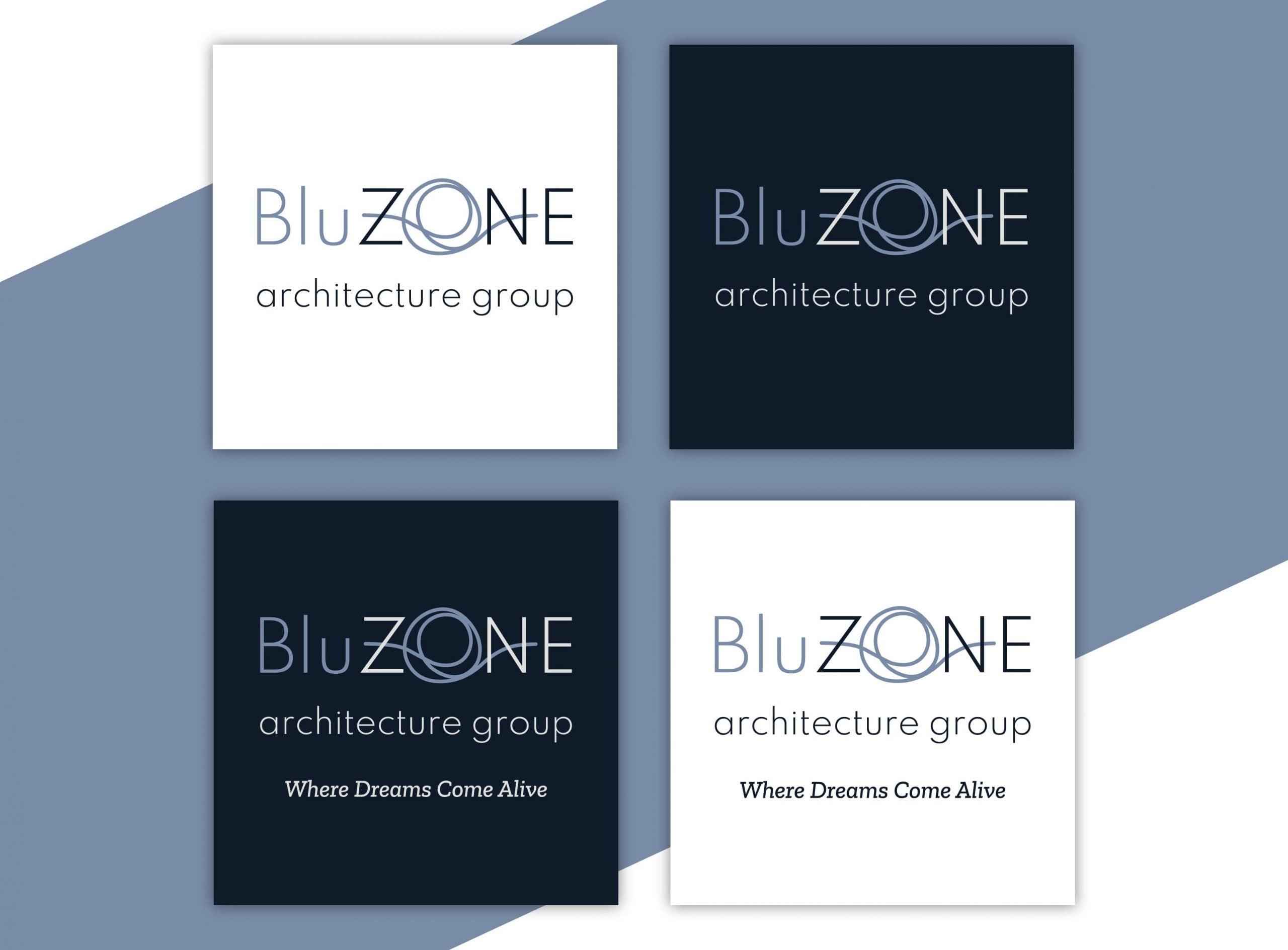 BluZONE - création de l'image de marque - déclinaisons